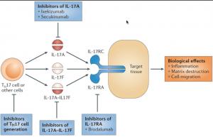 IL-17A Inhibitors