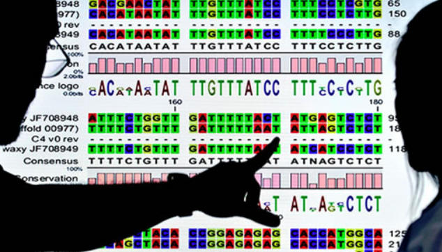 Genetic Trigger Discovered For Most Common Form of Mental Disability and Autism