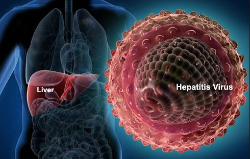 Elbasvir/Grazoprevir (Zepatier) for the treatment of chronic hepatitis C virus (HCV) genotypes 1 and 4 infections
