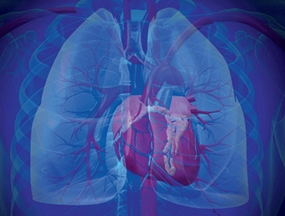 Riociguat (Adempas): Kontraindikation für Patienten mit pulmonaler Hypertonie in Verbindung mit idiopathischen interstitiellen Pneumonien (PH-IIP)