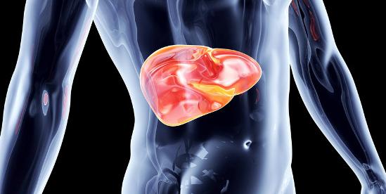 Antiviraux à action directe (AAD) – Évaluation du risque potentiel de réactivation du virus de l'hépatite B