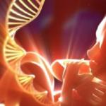 Lire l'avenir dans nos gènes?
