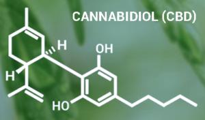 Epidiolex: Marijuana-derived drug to treat rare forms of epilepsy