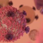 """ANSM et le thérapie génique: accès précoce aux premiers médicaments innovants """"CAR T-Cells"""""""