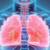 Three idiopathic pulmonary fibrosis (IPF)-associated genes newly identified