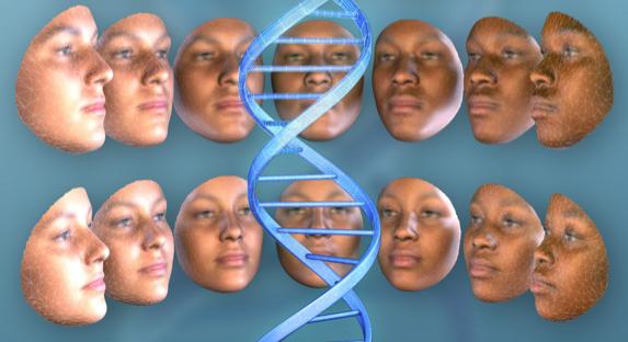 Studie in Individuen aus Ostafrika beleuchtet neue genetische Faktoren, welche menschlichen Gesichtern zugrunde liegen