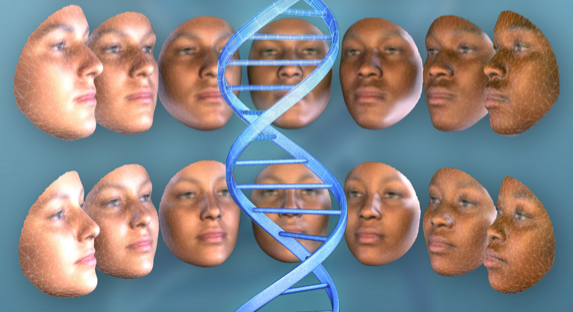 Study of East Africans illuminates new genetic factors underlying human faces